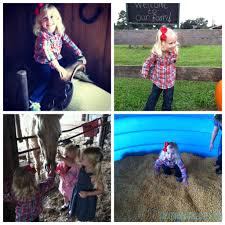 Silveyville Pumpkin Patch by Conners A Maize Ing Acres Hilliard Florida