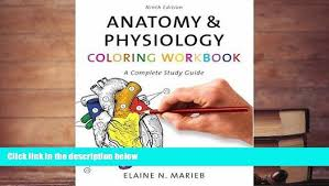 Anatomy Coloring Book Study Guide Pdf Free Download Physiology Workbook