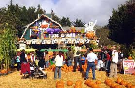Pumpkin Fest Half Moon Bay by Things To Do In Half Moon Bay Travelmagma Blog Shown In 26772 Blogs