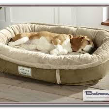 tempur pedic dog bed sale ktactical decoration
