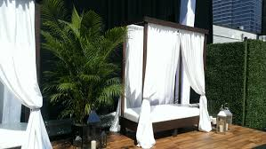 100 Bungalow 5 Nyc 8 Areca Palm Accent For Setup Palm Rental For NYC Rooftop