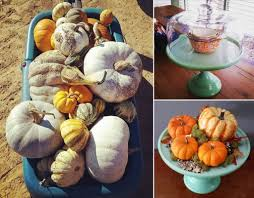 Mother Nature Pumpkin Patch Gilbert Az by Diy Archives Page 2 Of 11 Mine For The Making