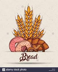 bread donuts pretzel pastry wheat poster