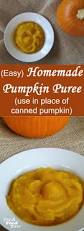 Libbys Pumpkin Oatmeal Bars by Homemade Pumpkin Puree Fresh Food Bites