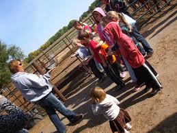 Lodi Pumpkin Patch by Directions Pumpkin Patch Event Venue Dream Field Farms