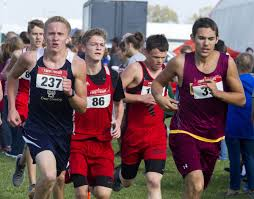 Schaefers Pumpkin Patch by St Anthony Teutopolis Cross Country Advances To Sectionals