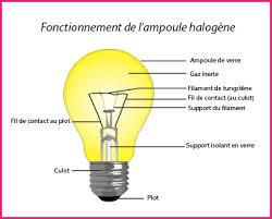 oules halogènes l évolution et le substitut de l oule à