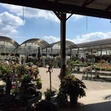 Dills Pumpkin Patch Columbus Ohio by Dill U0027s Greenhouse Nurseries U0026 Gardening 5800 Rager Rd