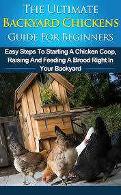 Buy Backyard Chickens Guide For Beginners: Easy Steps To Starting ... 1084 Best Raising Chickens In Your Back Yard Images On Pinterest 682 Chicken Coops 632 Backyard Ducks Keeping Backyard Chickens Agriculture And Food 100 Where To Buy Or Meet The Best 25 Ideas Pharmacologist Warns That Eggs From Pose Poultry Poultry Hub 7 Reasons You Should Raise 50 Pams