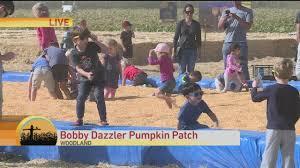 Santa Clarita Pumpkin Patch Festival by Bobby Dazzler Pumpkin Patch Youtube