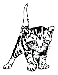 Kitten Coloring Pages Tten Pictures Printable Colouring Free Cute Cat Amusing Color New Wonder