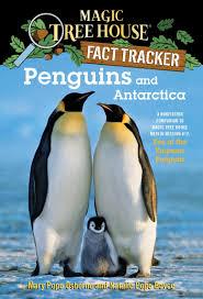100 Antarctica House Amazoncom Penguins And A Nonfiction Companion To Magic