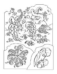 Coloring Pages For A Variety Of Animals From National Geographic