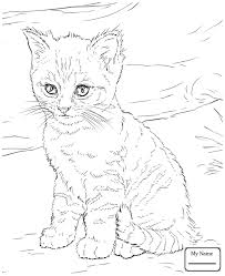 Printable Coloring Pages For Kids Mammals Alaskan Husky Free Book