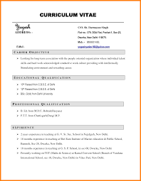 11 Cv Resume Example
