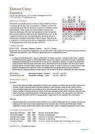 Executive CV Template Resume Professional Job Hunter