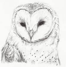 Image Detail For - Drawings :: Barn Owl Picture By LatiasRider ... How To Draw Cartoon Hermione And Croohanks Art For Kids Hub Elephants Drawing Cartoon Google Search Abc Teacher Barn House 25 Trending Hippo Ideas On Pinterest Quirky Art Free Download Clip Clipart Best Horses To Draw Horses Farm Hawaii Dermatology Clipart Dog Easy Simple Cute Animals How An Anime Bunny Step 5 Photos Easy Drawing Tutorials Drawing Art Gallery Kitty Cat Rtoonbarndrawmplewhimsicalsketchpencilfun With Rich