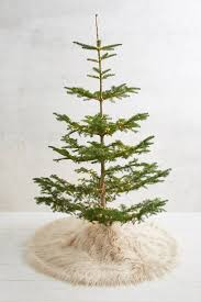 Qvc Christmas Tree Topper by Best 25 Fur Tree Ideas On Pinterest White Christmas Decorations