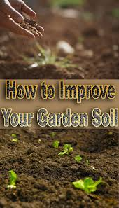 Raised Bed Soil Calculator by 811 Best Soil U0026 Amendments Images On Pinterest Garden Soil