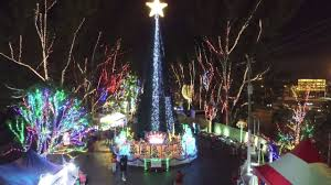 Santas Enchanted Forest Iconic Christmas Tree Light Show