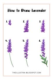 Drawing Flowers Step By Best 25 How To Draw Ideas On Pinterest