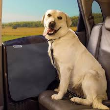 Non Shedding Dogs Large by Lab Mix Labrador Cross Breeds The Labrador Site