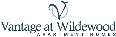 One Bedroom Apartments In Columbia Sc by Columbia Sc Apartments Vantage At Wildewood