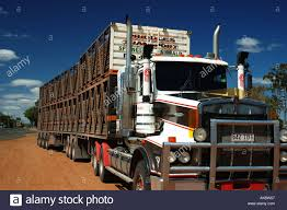 100 Cattle Truck Double Road Train Cattle Truck Remote Queensland Dsc 3721 Stock