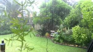 Austin Tropical Backyard Raining 2015 - YouTube Patio Ideas Small Tropical Container Garden Style Pool House Southern Living Backyard Design 1000 About Create A Oasis In Your With Outdoor Plants 1173 Best Etc Images On Pinterest Warm Landscaping 16 Backyard Designs The Cool Amenity For Tropicalbackyard Interior Vacation Landscapes Diy