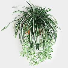 lixiff künstliche blumen pflanzen wandbehang chlorophytum