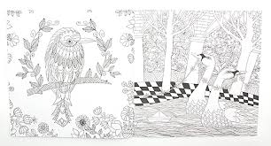 The Enchanted Forest 24 Pages English Edition Coloring Book For Adult Relieve Stress Kill Time Graffiti Painting Drawing In Books From Office School