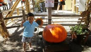 Pumpkin Patch Irvine Park Hours by 7 Things To Do At Irvine Regional Park In Orange California