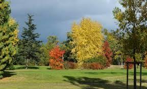 golf de mont de marsan golf de mont de marsan parcours de golf 0 avis le score n r