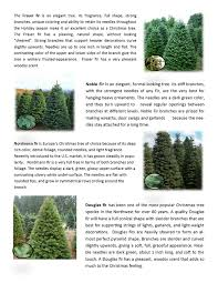 Caring For Your Fresh Cut Christmas Tree Is Much Like A Bouquet Of Flowers Both Should Have On The Stem Be Placed In