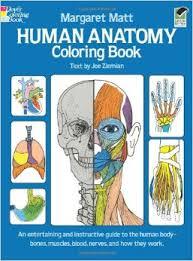 Human Anatomy Diagram Coloring Book Dover Children Science Books Author Margaret Matt Text By Joe