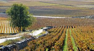 opera chambre agriculture en beaune surroundings and assetsl la maison beaune