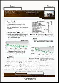 One Page Business Summary Template