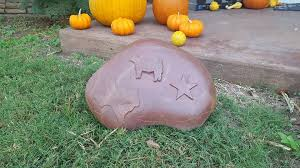 Pumpkin Patch Parker County Texas by Coffee Reata A Wild Orchid Florist Home Facebook
