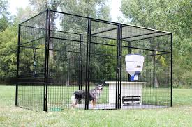 7' Tall Ultimate Dog Kennel Amazoncom Heavy Duty Dog Cage Lucky Outdoor Pet Playpen Large Kennels Best 25 Backyard Ideas On Pinterest Potty Bathroom Runs Pen Outdoor K9 Professional Kennel Series Runs For Police Ultimate Systems The Home And Professional Backyards Awesome Ideas About On Animal Structures Backyard Unlimited Outside Lowes Full Stall Multiple Dog Kennels Architecture Inspiration 15 More Cool Houses Creative Designs