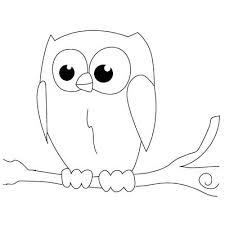 My How To Draw Best 25 Simple Owl Drawing Ideas Pinterest