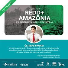 amazonia si e social ipam amazônia community