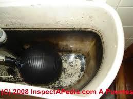Bath Water Smells Like Rotten Eggs by Sulphur Odors In Water Identify U0026 Cure Sulphur Smells Or Odors In
