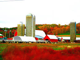 File:Toms Family Farm - Panoramio.jpg - Wikimedia Commons Play Workshop Hlight Project On Continued Stewardship Of Red Barn Quilt Pattern Family Barn For Tango Image Apple Family At The S3e8png My Little Pony Martis Camp Life Modern Build Your Farm Top Free Fun Games Puzzle Android 79 Best Maine Weddings Images Pinterest Playa Cortez Sunset Streams Through This Which Dates Back To Before Filetoms Farm Panoramiojpg Wikimedia Commons Apps Google Level 13 Hd 720p Youtube
