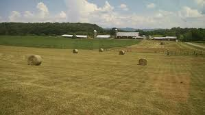 Farm – Between Three Waters Top Country Wedding Songs Gac The Hay Is Baled Eden Hills Passionettes And Albany State Band Fight Songhay In The Middle Hauling Hay 1950s Farm Scenes Pinterest Bethunecookman University Lets Go Wildcatshay In Hd Youtube Haystack Lounge Decor My Wife Yvette Decor Best 25 Barn Party Decorations Ideas On Wedding Environmental Art Archives Schuylkill Center For Mchs Presidents Page Miller County Museum Historical Society Just Me June 2013 Pating Unique Bale Of Bales Straw