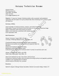 Executive Resume Templates New Senior Fresh Format Archives Of