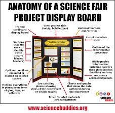The Project Display Board Is A Key Part Of Science Fair Get