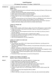 Company Secretary Resume Samples