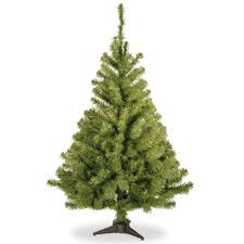 Menards Christmas Tree Storage Bags by Fresh Tree Stand Christmas Tree Stands Christmas Trees The