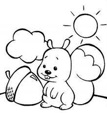 Printable Coloring Pages Kids Squirell