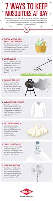 31 Best Mosquitoes Images On Pinterest | Mosquitoes, Pest Control ... 15 Backyard Tiki Torches Torches Citronella Oil And How To Get Rid Of Mosquitoes Mosquito Magnet The Best Ways To Of Naturally Beat The Bite Backyard Mosquitoes Research 6 Plants Keep Bugs Away Living Spaces Creepy 10 Herbs That Repel Bug Zapper Plant Lemongrass As A Natural Way Keep Away Pure 29 Best Images On Pinterest Weird Yet Effective Pest Hacks Thermacell Repellent Patio Lanternmr9w Home Depot 7 Easy Mquitos Dc Squad